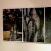 """Ausstellung: """"Buchstämme und Baumstaben"""""""