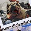 """Ausstellung: collagierte Postkarten """"wetti-card""""  von Barbara Fuchs – Boshaftes zum Nachdenken"""